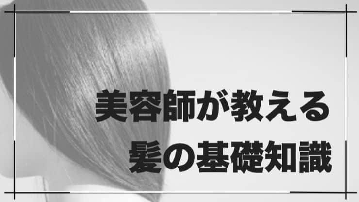 美容師が教える「髪の基礎知識」