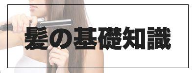 髪の基礎知識