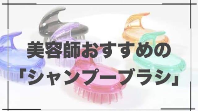 【おすすめシャンプーブラシ】美容師がおすすめするブラシランキング10選